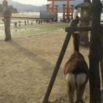 広島旅行①